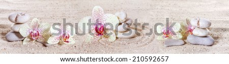 Panorama with orchids and zen stones in the sand  - stock photo