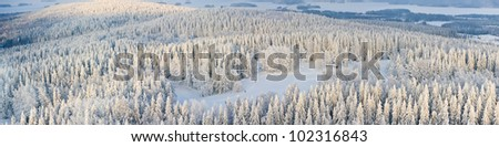 Panoramic aerial view of winter forest with frosty trees and skiers. Kuopio, Finland - stock photo