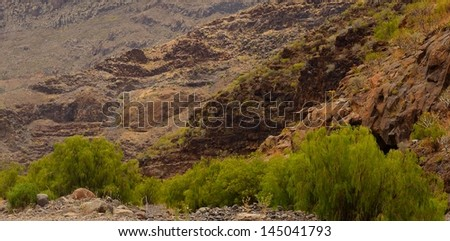 Panoramic image in the interior of Tirajana ravine with rocky slopes and native bushes along the dry riverbed, Gran canaria, Canary islands - stock photo