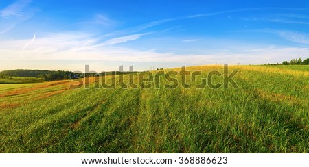 Panoramic landscape with field of green grass and blue sky. Summer sunny day in the countryside. - stock photo