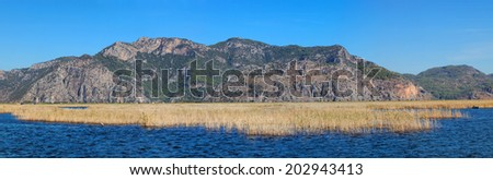 Panoramic reed water landscape, between Marmaris and Fethiye, Turkey, Europe - stock photo