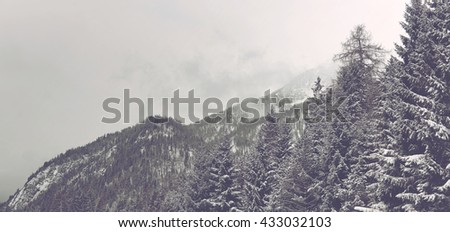 Panoramic Scenic Landscape View of Snowy Alpine Mountain Peaks Covered with Thick Evergreen Forest on Overcast Winter Day with Low Lying Clouds - stock photo