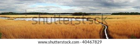 Panoramic view - Fields of Gold - stock photo