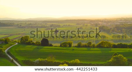 Panoramic view of a vineyard in the Tuscan countryside foggy - stock photo