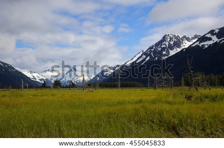 Panoramic view of an open field under the snow capped mountains in Alaska - stock photo