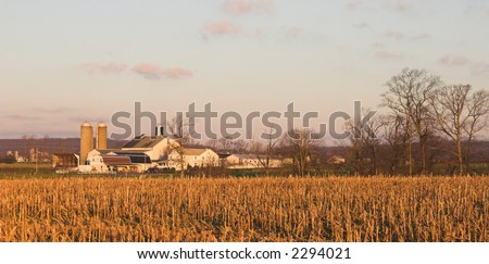 panoramic view of autumn farm and harvested field of corn - stock photo
