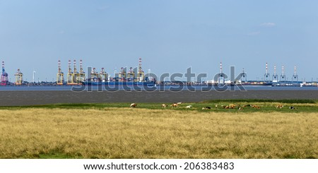 Panoramic view of container terminals at Bremerhaven, meadow with cows in foreground - stock photo