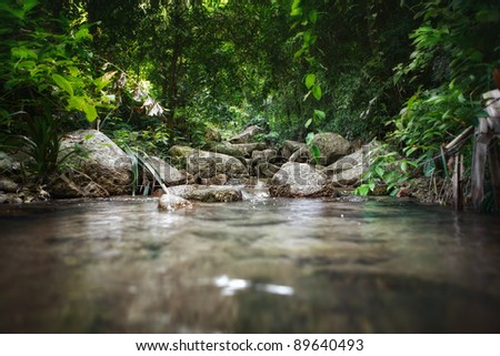 panoramic view of nice tropic jungle and huge boulders - stock photo