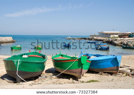 Panoramic view of Polignano a Mare seaport. Apulia. - stock photo