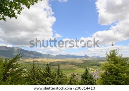 Panoramic view of vineyards in La Rioja, Spain. - stock photo