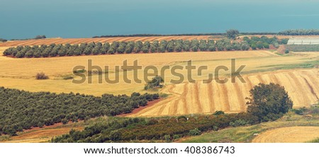 Panoramic view on agriculture valley Arbel., Green fields,arable lands,olive plantations, wheat harvesting fields.In the background Sea of Galilee -Tiberius lake.Low Galilee,Israel.Toned vitage colors - stock photo