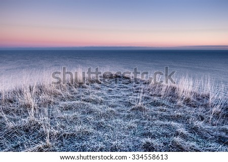 Panoramic view winter sea and frozen grass - stock photo