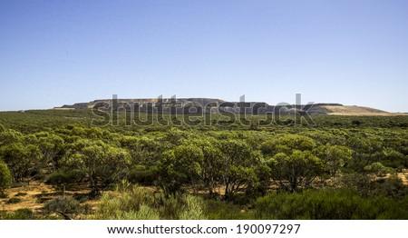 Panoramic views of Australian forest, iron mining South Australia - stock photo