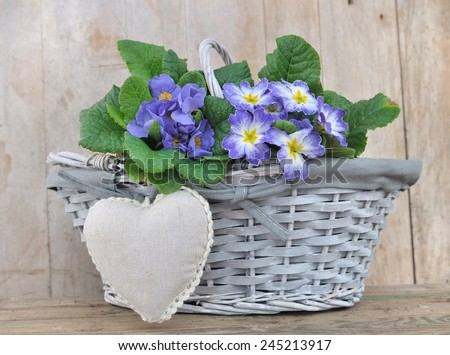 pansies in a basket with a heart  shaped cushion on a wooden background  - stock photo