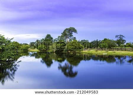 Pantanal in Mato Grosso. The Pantanal is one of the world's largest tropical wetland areas located in Brazil , South America - stock photo