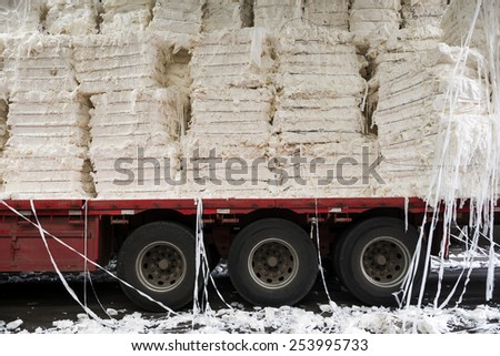 Paper and pulp mill - Detail of cellulose. It mainly obtained from wood pulp and cotton. It is mainly used to produce cardboard and paper. - stock photo