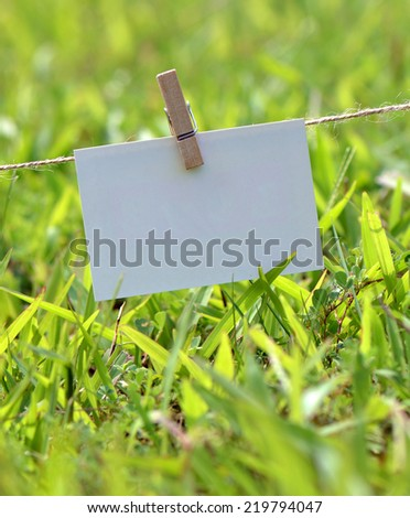Paper card hanging on the rope, blank - stock photo
