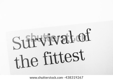 college essays college application essays survival of the  survival of the fittest essay