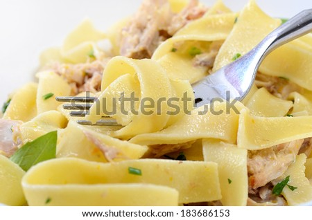 pappardelle with a rabbit and cream macro - stock photo