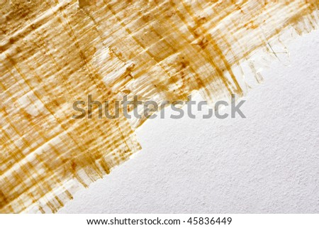 papyrus on the background of white paper textures - stock photo