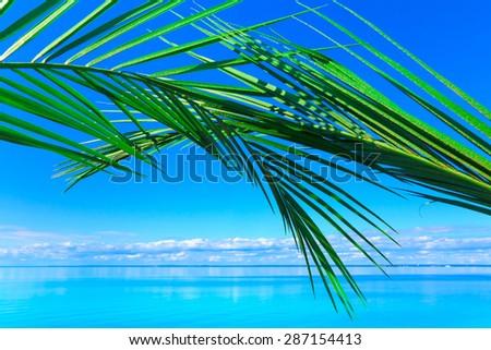 Paradise Beach Peace  - stock photo