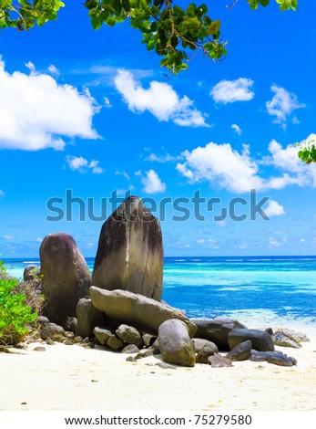 Paradise Coconut Beach - stock photo