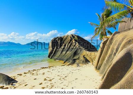 Paradise Coconut Summer  - stock photo
