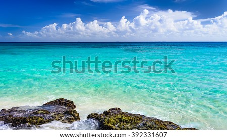 Paradise nature, sand, sea water, rocks, palm tree leaves and summer on the tropical beach.  Playa Del Carmen, Riviera Maya, Mexico. - stock photo