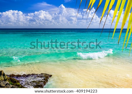 Paradise nature, sand, sea water, rocks, yellow palm tree leaves and summer on the tropical beach.  Photo from Playa Del Carmen, Riviera Maya, Yucatan, Mexico. - stock photo