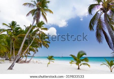 Paradise on earth, scenery of tropical beach on caribbean island Saona in Dominican Republic - stock photo