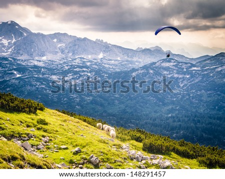 Paragliding over sheep at Krippenstein in the Austrian Alps - stock photo