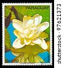 PARAGUAY - CIRCA 1973: A stamp printed in Paraguay shows tropical flowers, circa 1973 - stock photo