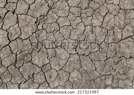 Parched and cracked soil, gray background - stock photo