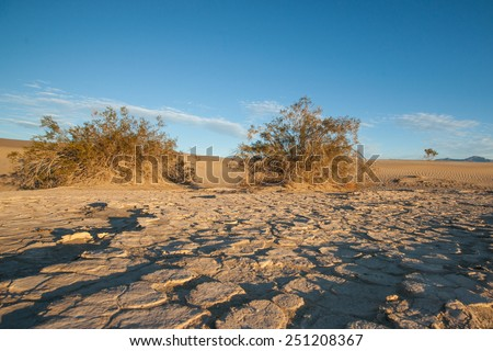 Parched earth in Death Valley National Park shows sign of the drought. - stock photo