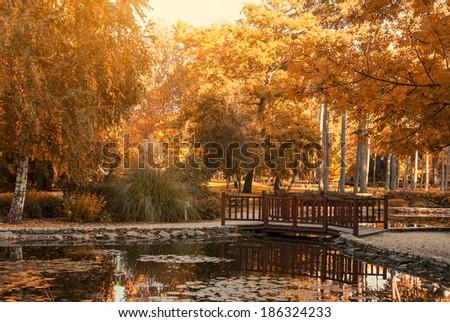 Park - stock photo