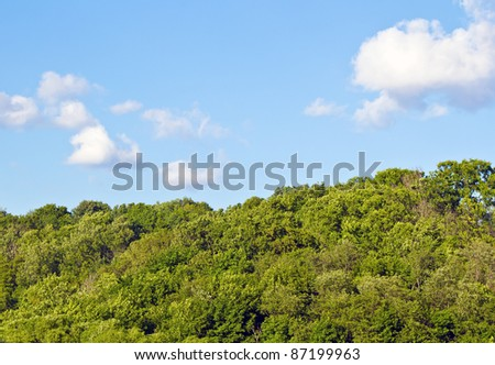 park and sky for background - stock photo