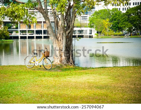 Park at sunny day with bicycle  - stock photo