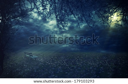Park bench in autumn dramatic mood - stock photo