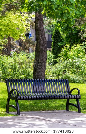 Park Bench in black metal, with trees, leaves, flag, and grass in the background. - stock photo
