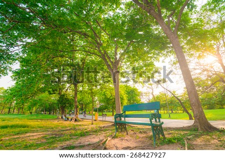 Park Bench in the sunset light, Sunset in beautiful park - stock photo