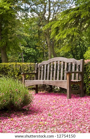 park bench surrounded by pink blossom - stock photo