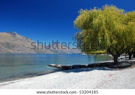 Park by lake Wakatipu, Queenstown, New Zealand - stock photo