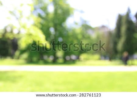Park in summer sunlight, blurred background - stock photo