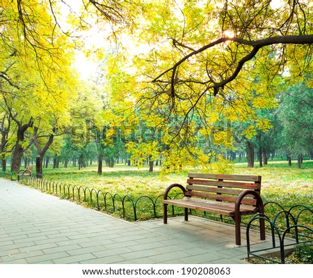 Park in the fresh air of the Boulevard and chair - stock photo