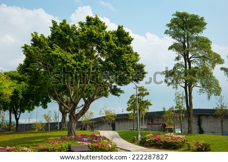 park with a big tree in the city - stock photo