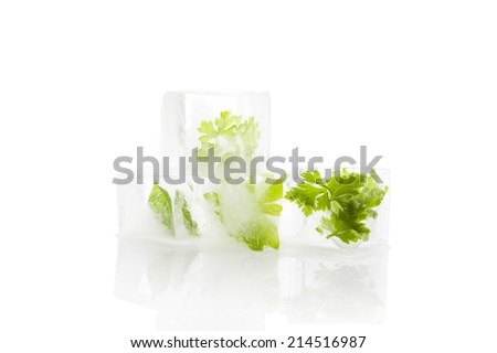 Parsley and basil frozen in ice cubes isolated on white background. Culinary cooking herbs. - stock photo