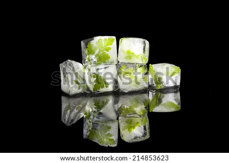 Parsley, basil and lovage leaves frozen in ice cubes isolated on black background. Culinary aromatic herbs. Fresh healthy cooking.  - stock photo