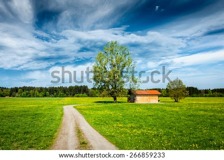 Parstoral European scene - rural road in summer meadow, tree and wooden shed. Bavaria, Germany - stock photo
