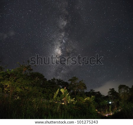 Part of a night sky with stars and Milky Way on equatorial latitude with green tropical trees below - stock photo