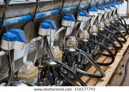 Part of equpment for milking cows on dairy farm - stock photo